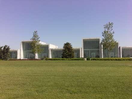 Shopping Mall - Facciare strutturali a fissaggio puntuale - Baku, Azerbaijan: Centri commerciali in stile  di Vetroprogetti - Ing. Raffaele Roscioli