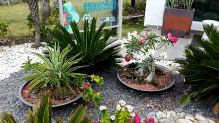 Jardines ideas dise os y decoraci n homify for Jardines ideas economicas