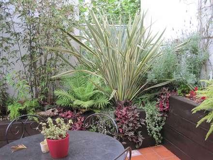 Jardines tropicales: ideas, imágenes y decoración | homify