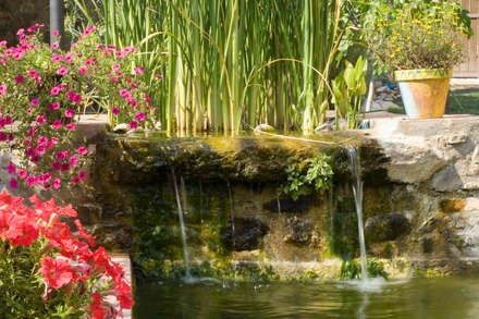 FUENTES Y CASCADAS: Jardines de estilo mediterráneo de jardinista