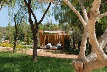 Jardim, Hotel,: Jardins modernos por Verde Esquisso Lda.