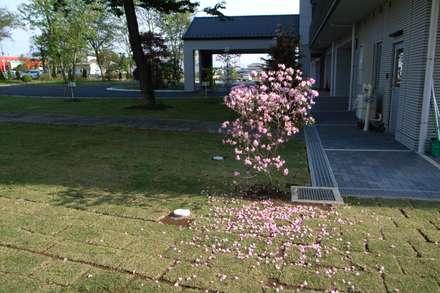 Пруд в саду в . Автор – 株式会社小木野貴光アトリエ 級建築士事務所