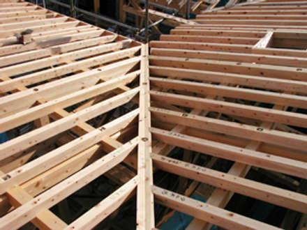 振隅の屋根: 木造トラス研究所・株式会社 合掌が手掛けた家です。