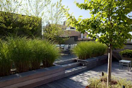 Urban Oasis:  Terrasse von Paul Marie Creation