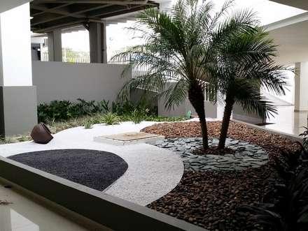 EDIFICIO MIRADOR DE SAN PEDRO - SANTA MARTA/MAGDALENA - COLOMBIA: Jardines de estilo tropical por BRASSICA SOLUCIONES PAISAJISTICAS S.A.S.