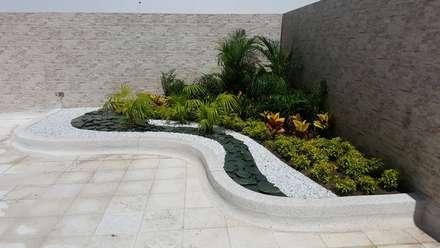 Jardines de estilo topical por BRASSICA SOLUCIONES PAISAJISTICAS S.A.S.