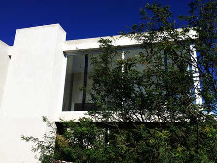 Casa VAR: Ventanas de estilo  por Development Architectural group