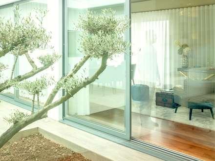 Moradia Granja   2017: Jardins de Inverno modernos por Susana Camelo
