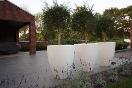 vijvertuin met 3 niveau's: industriële Tuin door BMT