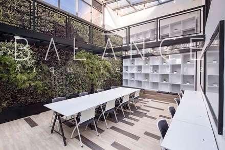 ZONA DE TRABAJO CON BIBLIOTECA DE DOBLE ALTURA Y MURO VERDE: Espacios comerciales de estilo  por Balance Arquitectura