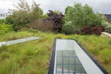 Living roof: rustic Garden by Fraher Architects Ltd