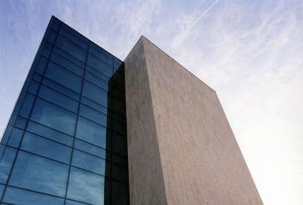 Oficinas revestidas en piedra natural: Oficinas y Tiendas de estilo  de ARENISCAS ROSAL