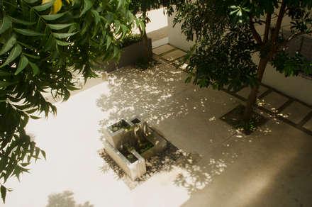 CASA 74: Jardines de estilo minimalista por RCRD Studio
