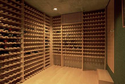 東谷山の住宅: アトリエ環 建築設計事務所が手掛けたワインセラーです。