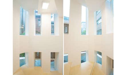 신길동 주택: 더이레츠의  창문