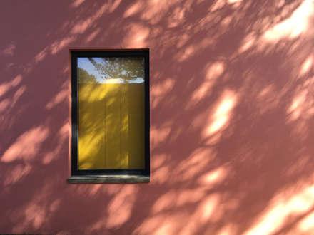Windows by Mezzo Atelier