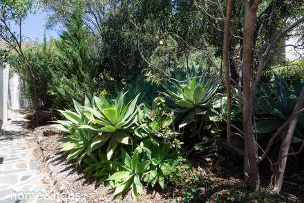 Jardín: Jardines de estilo mediterráneo de Home & Haus   Home Staging & Foto