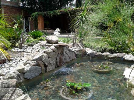 tropical Garden by RIVERA ARQUITECTOS