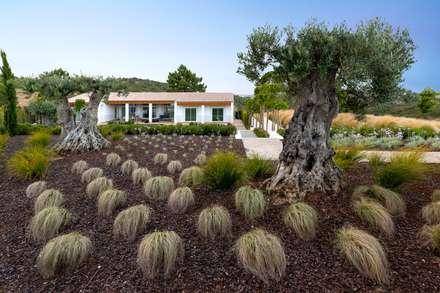 Villa Salema: Jardins mediterrânicos por Jardíssimo