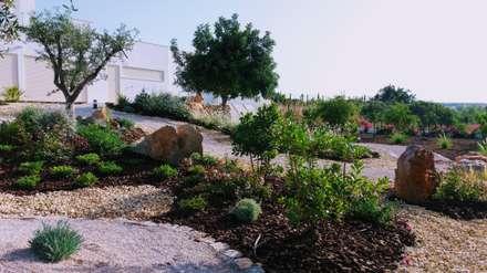庭院 by JARDIMGARVE