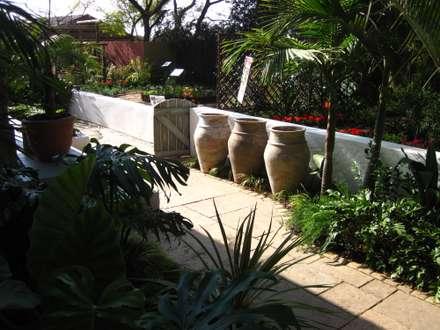 contemporary rustic coastal courtyard: rustic Garden by Young Landscape Design Studio
