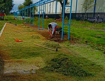 Передний двор в . Автор – terranova Proyectos de Jardinería y Limpieza