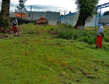Jardines delanteros de estilo  de terranova Proyectos de Jardinería y Limpieza