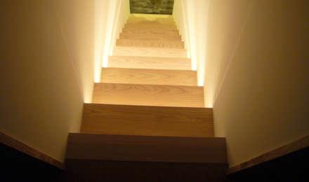 木の外壁の家: 杉浦建築計画事務所が手掛けた玄関・廊下・階段です。