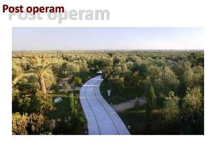 BOSCO DEGLI ULIVI !: Sedi per eventi in stile  di Natura&Architettura