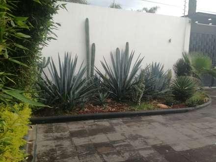 new mxico style jardines de estilo minimalista por arq beatriz gmez g