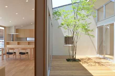 中庭: TEKTON | テクトン建築設計事務所が手掛けた窓です。