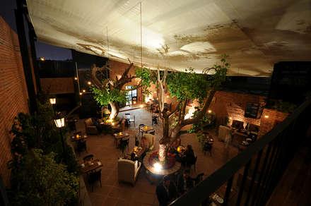 Restaurantes de estilo  por Monolito