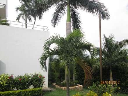 La fachada de la casa con sus jardines: Jardines frontales de estilo  por CH Proyectos Inmobiliarios