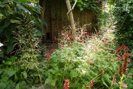 Kerzenknöterich und Rasenschmiele im Gegenlicht: tropischer Garten von Gartenarchitekturbüro Timm