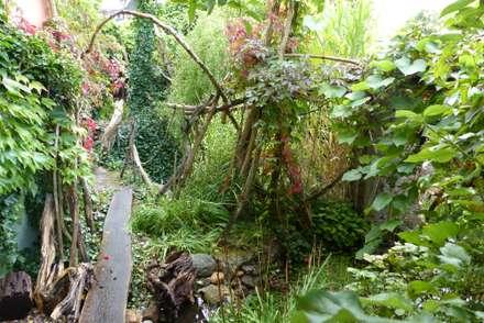 Der Garten im Septemebr 2017: tropischer Garten von Gartenarchitekturbüro Timm