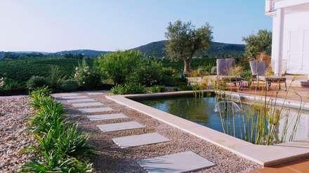 Jardim Gião: Jardins mediterrânicos por JARDIMGARVE