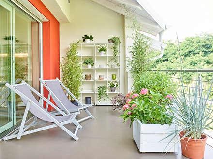 appartamento CS: Terrazza in stile  di Burnazzi  Feltrin  Architects