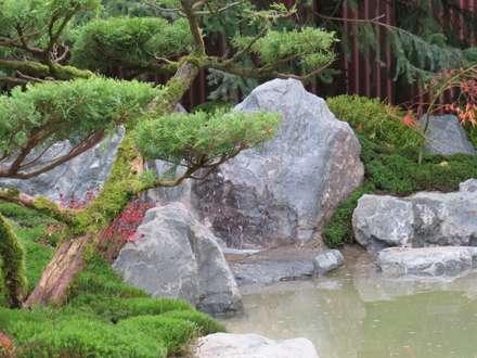 Asiatische gartengestaltung ideen und bilder homify - Gartengestaltung asiatisch ...