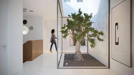 Casa Aline: Jardines de invierno de estilo moderno de SINGULAR STUDIO