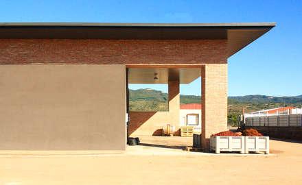 BODEGA VIÑEDOS PLANAS ALTAS. BAÑOS DE RÍO TOBÍA: Bodegas de estilo moderno de Rafael Hernáez Loza AITEC Proyectos