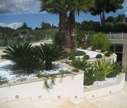 สวนหน้าบ้าน by Arch. Giuseppe Barone _ Studio di Architettura & Tutela del Paesaggio