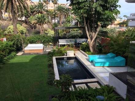 Piscina: Piscinas de jardín de estilo  de Jardineros de interior