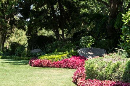 Vườn by Mexikan Curious