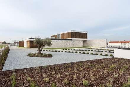 Jardines zen de estilo  por Risco Singular - Arquitectura Lda