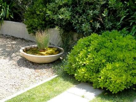 Proyecto de Paisajismo Familia Araya - Lo Barnechea, Santiago-Chile: Jardines de estilo moderno por Aliwen Paisajismo