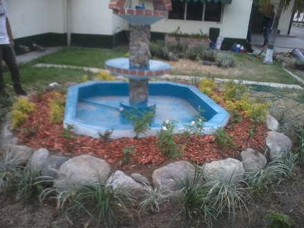 Rock Garden by Vida Verde