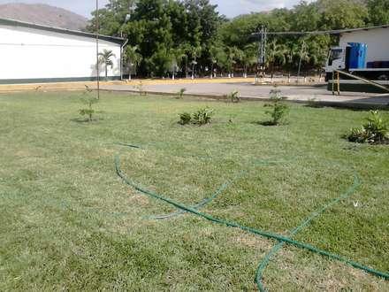 kolonialer Garten von Vida Verde