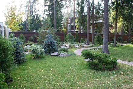 Сосновый бор: Сады в . Автор – ПАН Ландшафт