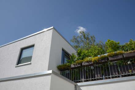 Balkon:  Mehrfamilienhaus von Grotegut Architekten