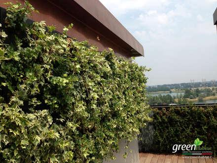 ATTICO GREEN: Tetto in stile  di Green Habitat s.r.l.